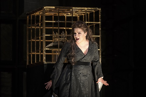 Crown cage Netrebko.jpg