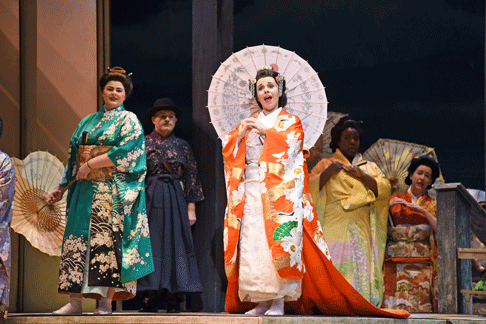 M-Butterfly-1.png